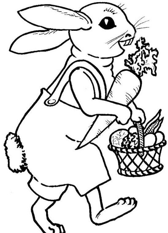 Coniglietto con carota da colorare