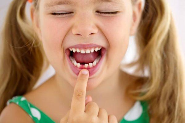 Calendario della dentizione di un bambino