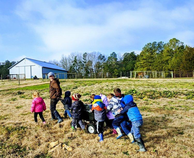 fattoria didattica bambini