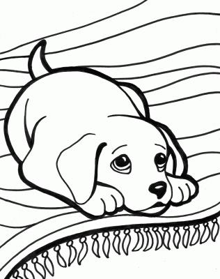 cani da colorare e stampare