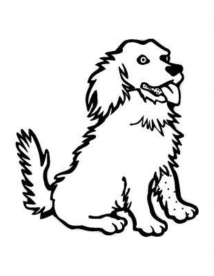 cane disegno