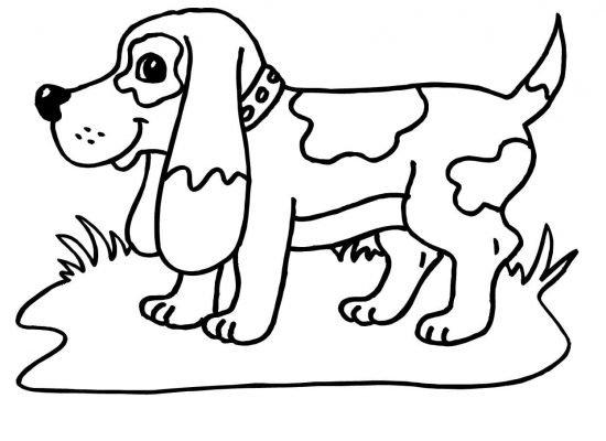 cagnolino disegno