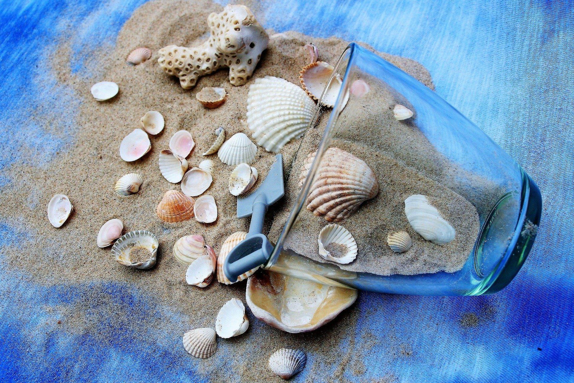 Come pulire le conchiglie prese al mare dai bambini?