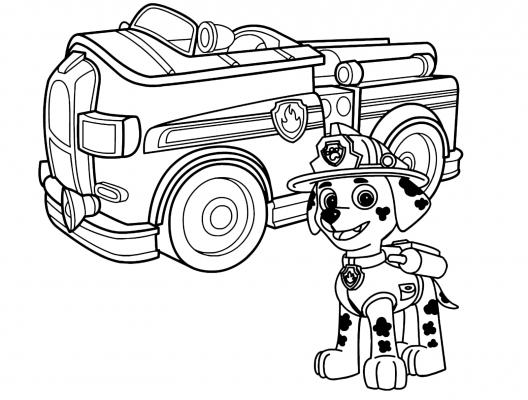 immaginiPaw Patrol