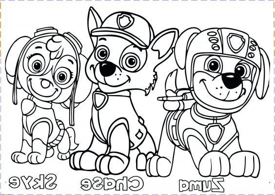 disegno da colorare Paw Patrol