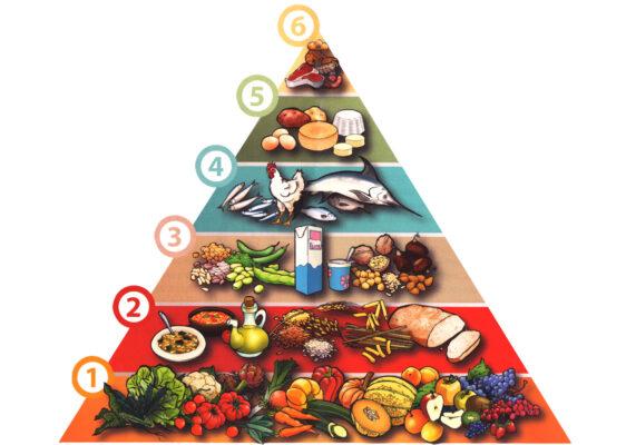 piramide alimentare bambini