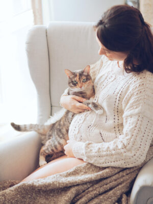 toxoplasmosi cane toxoplasmosi gatto e gravidanza