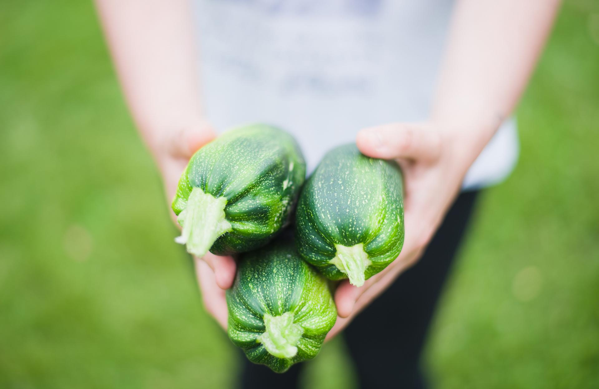 Zucchine: i benefici di una verdura versatile e adattissima allo svezzamento