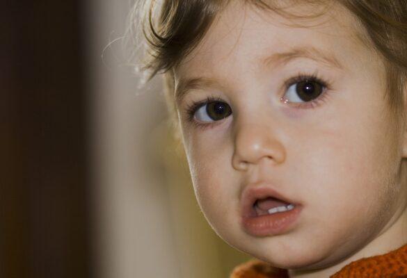 Punture di zanzare bambini: come alleviare il prurito. 10 Rimedi casalinghi