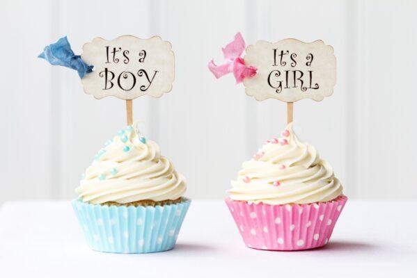 maschio o femmina gravidanza sesso bambini