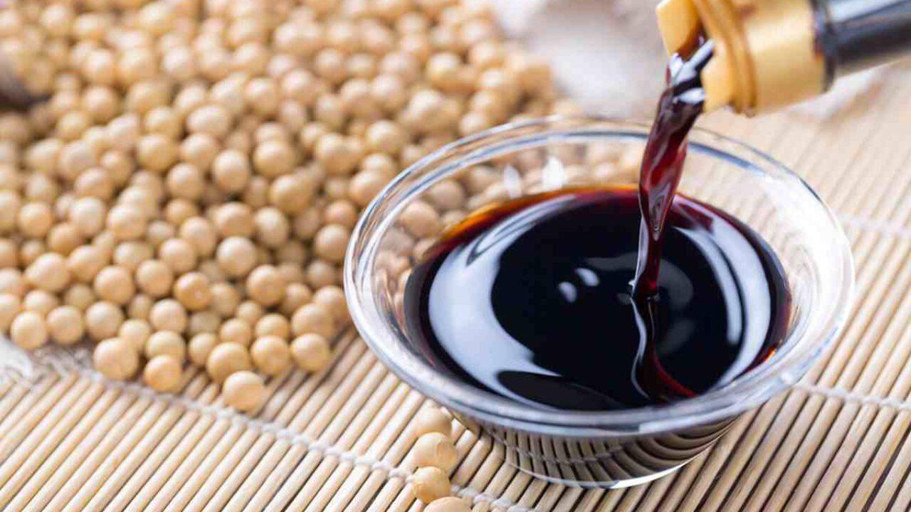 Salsa di soia in gravidanza: si può mangiare? Cosa dicono gli esperti