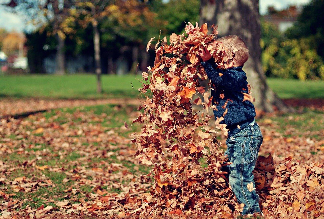 Cosa fare in autunno coi bambini? Ecco 10 attività autunnali per le famiglie