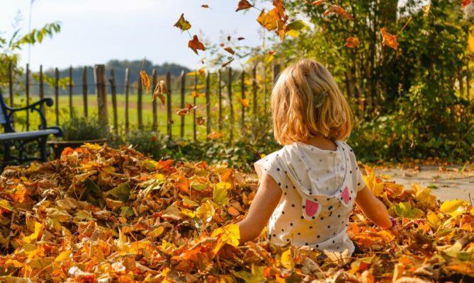 Giochi d'autunno per bambini da 1 a 3 anni