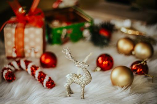 Natale nel mondo da spiegare ai bambini: ecco come si festeggia in America
