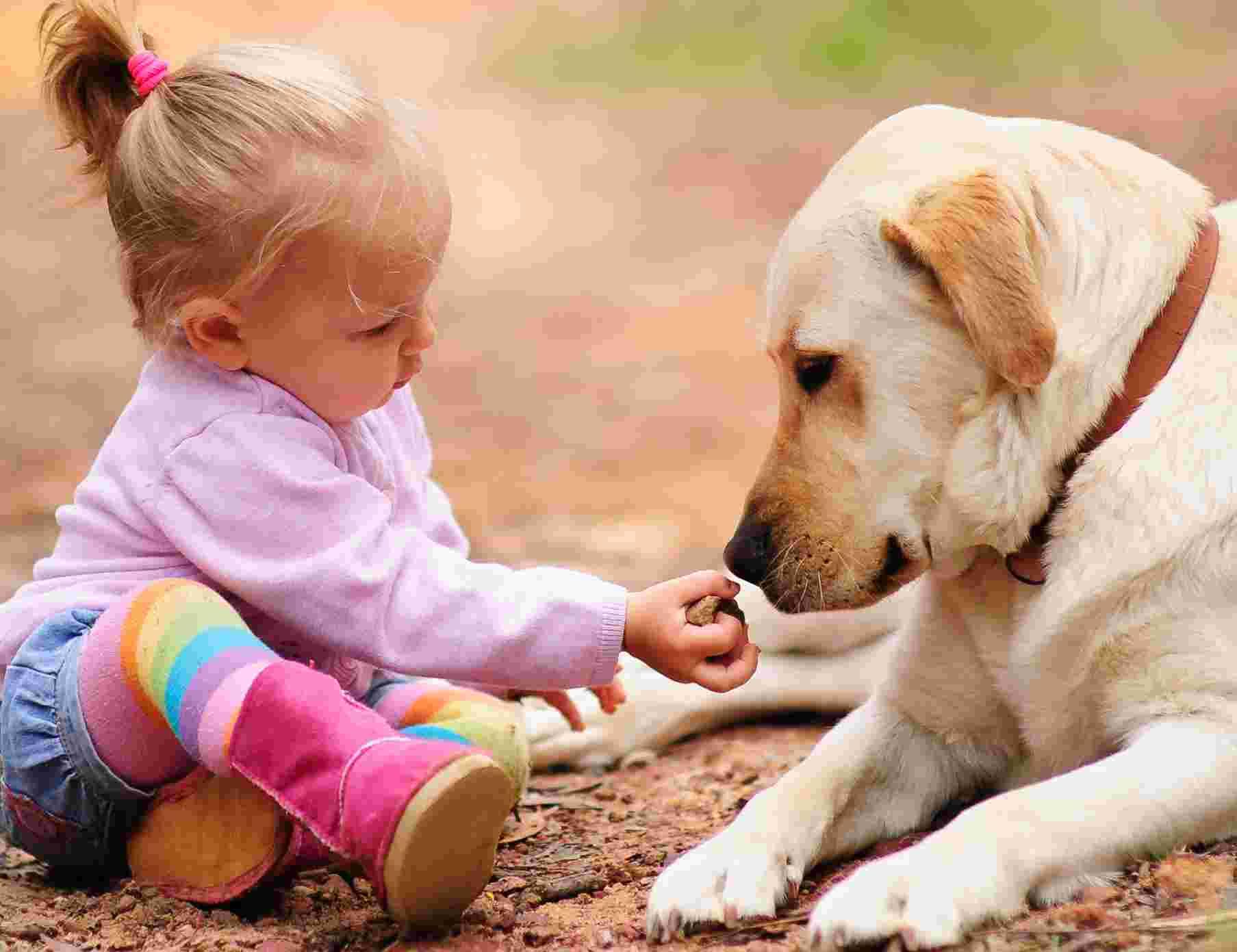 cani adatti ai bambini