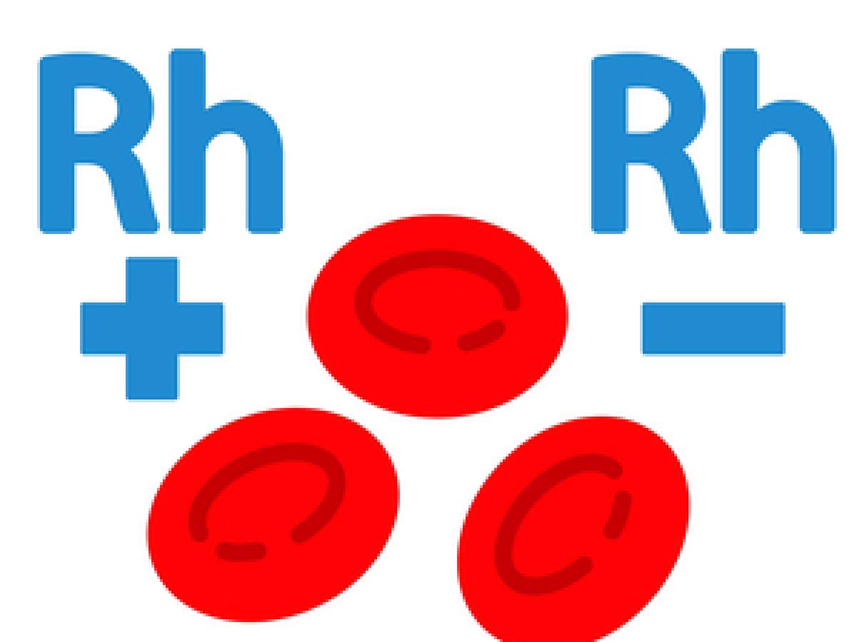 fattore rh in gravidanza
